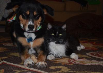 Fletch and Vader